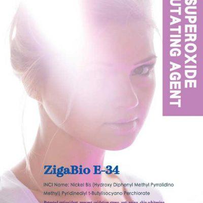 2020 新產品上市 ZigaBio E-34